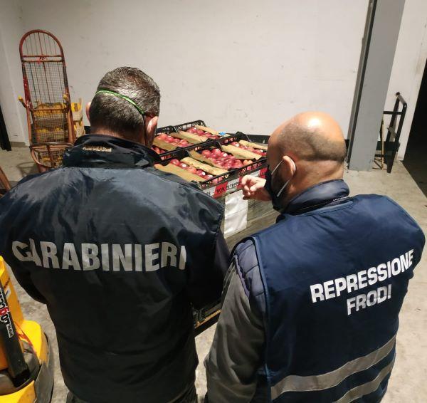 Maddaloni, controlli al mercato: sequestrati 230 kg di mele annurche false IGP