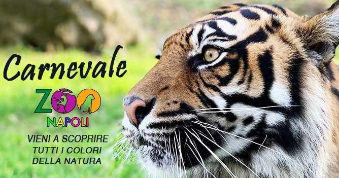 Carnevale allo Zoo di Napoli: chi entra in maschera torna gratis