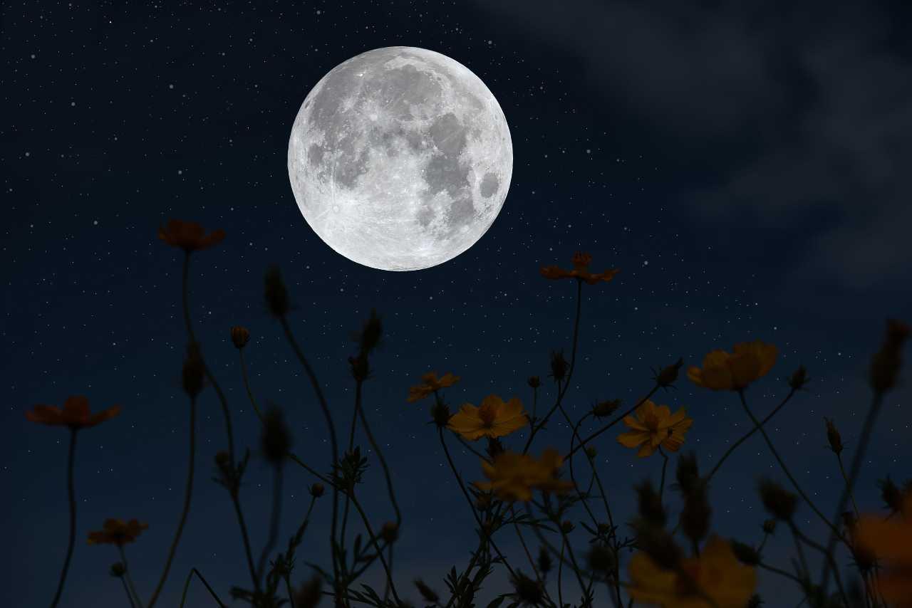 Superluna, tutto pronto: come vedere la spettacolare eclissi