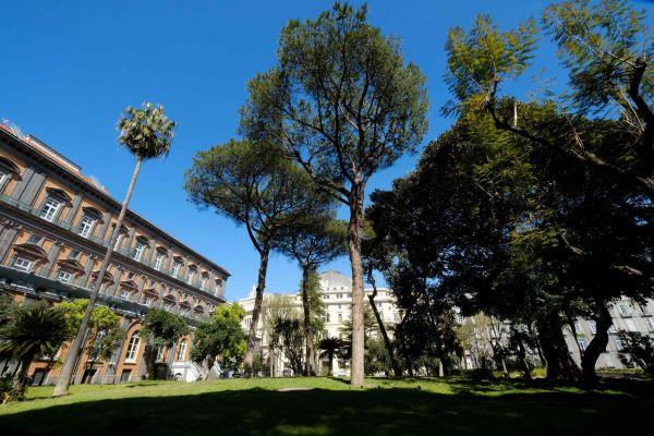 Palazzo Reale: giovedì 10 giugno Conversazioni nel verde con Franco Arminio