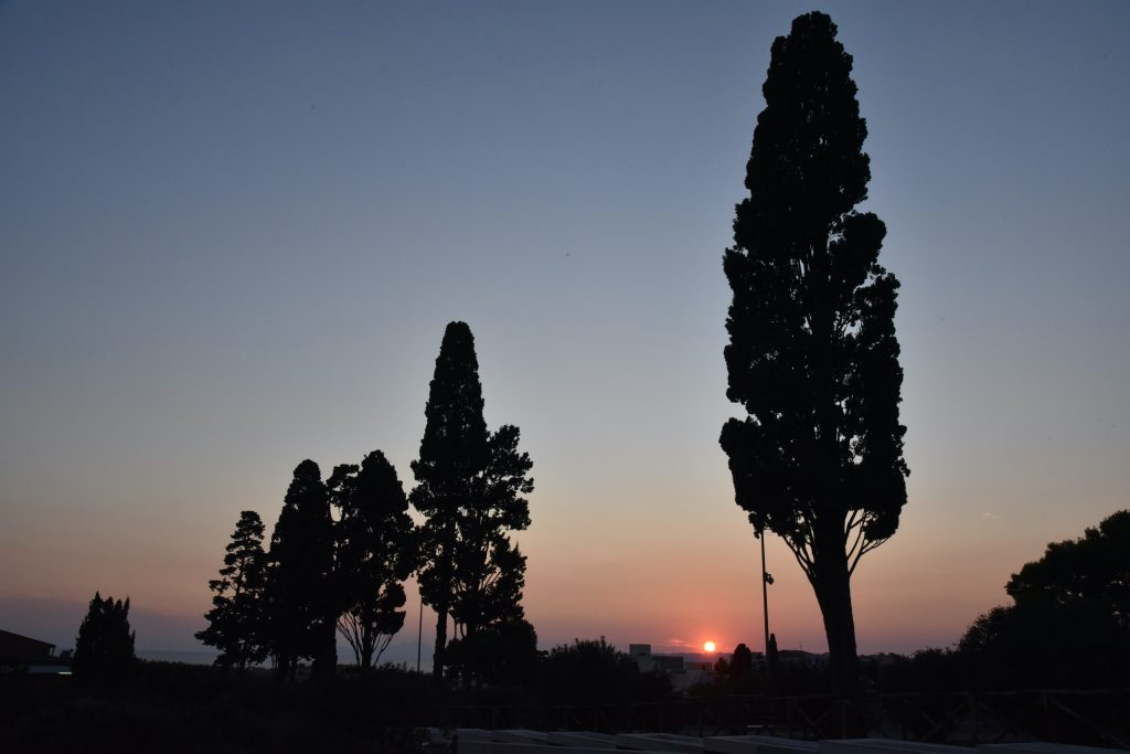 Al Parco Archeologico di Ercolano #GliOziDiErcole. Ecco il ricco programma di eventi